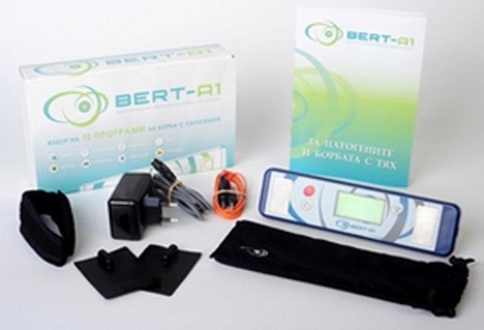 bert3